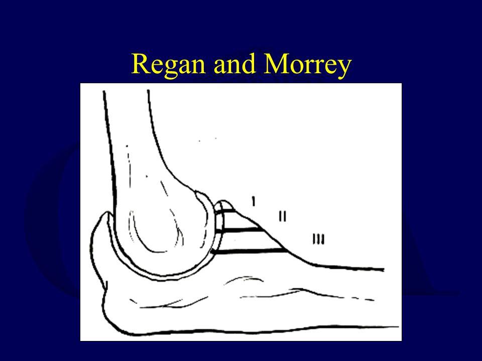 Regan and Morrey