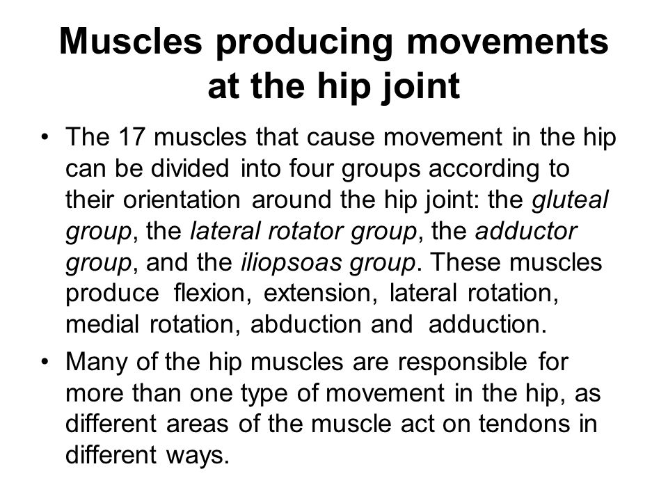 Muscles producing movements at the hip joint