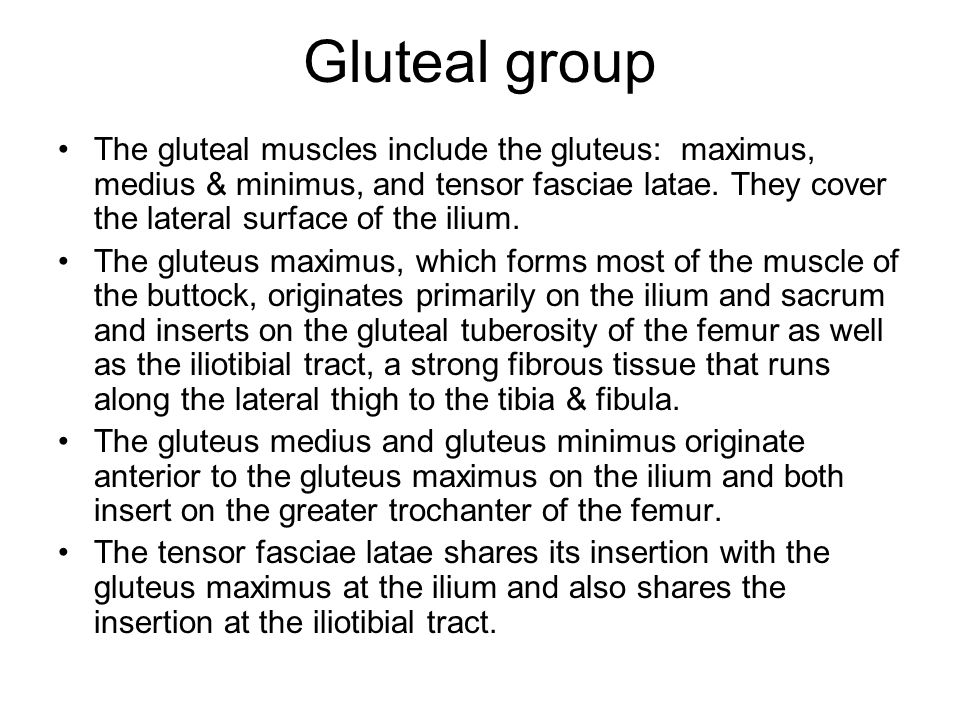 Gluteal group