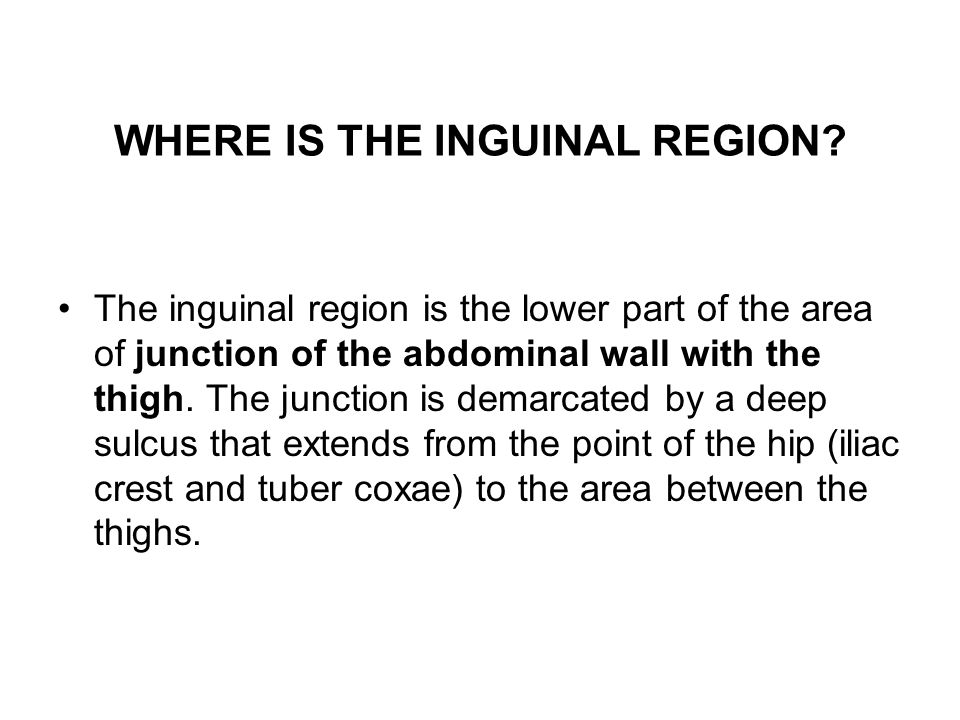 WHERE IS THE INGUINAL REGION