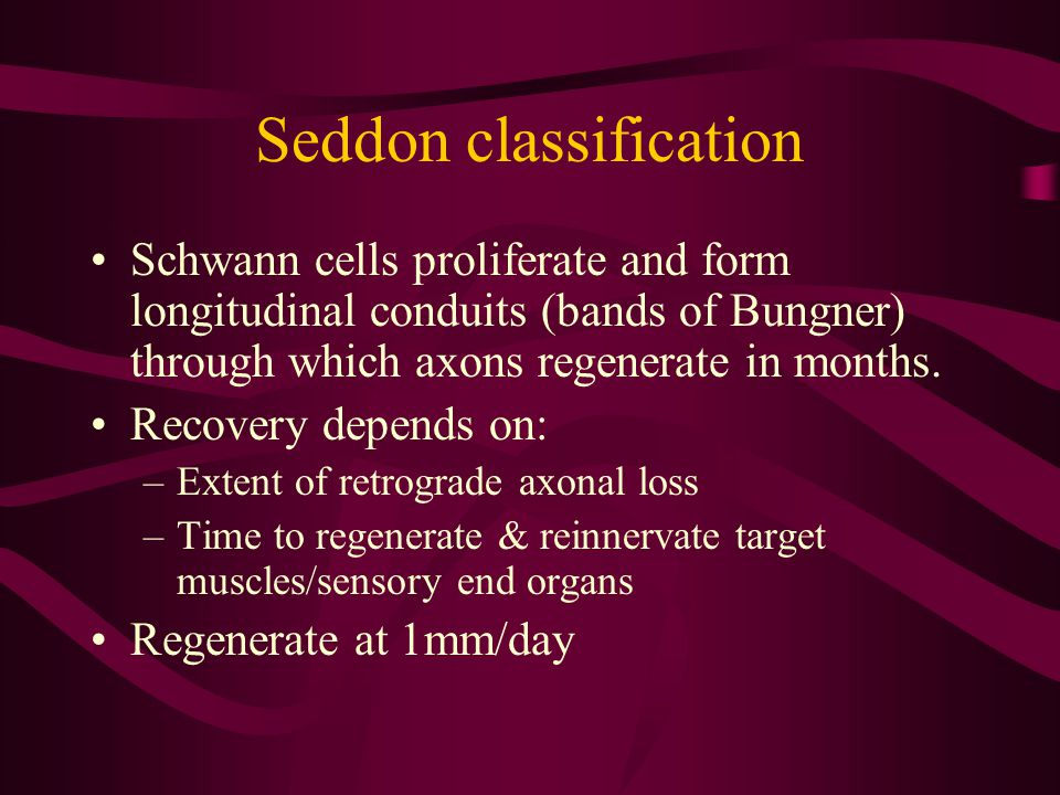 Seddon classification