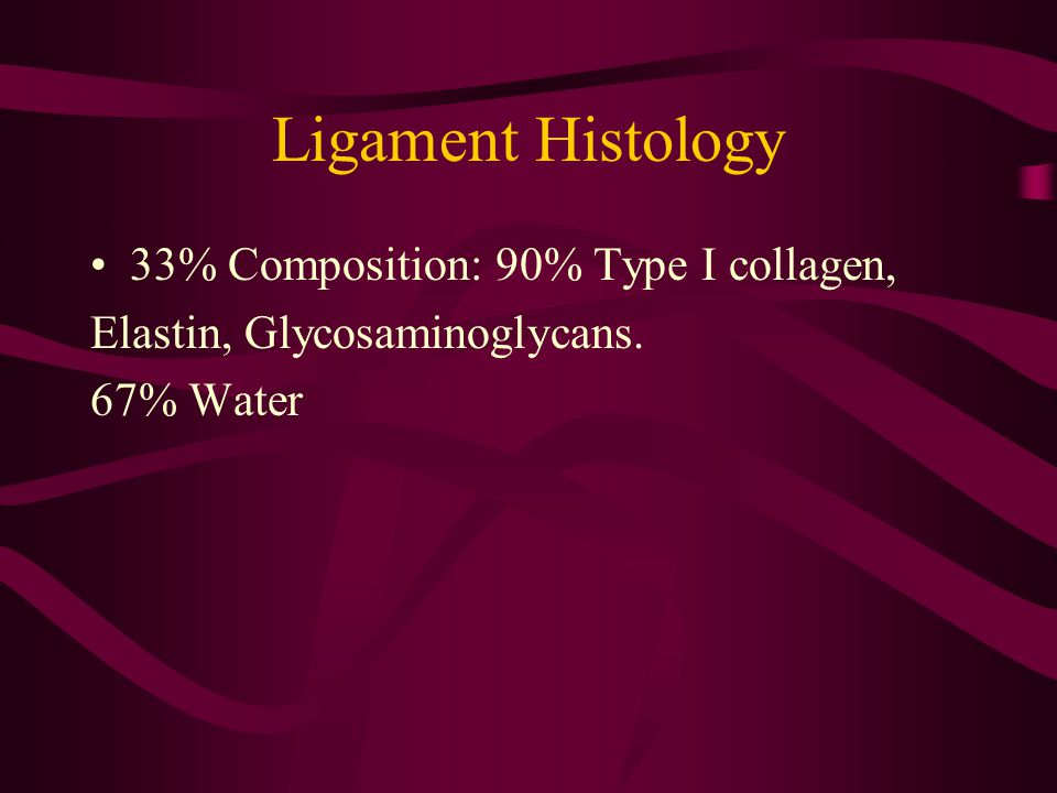Ligament Histology 33% Composition: 90% Type I collagen,