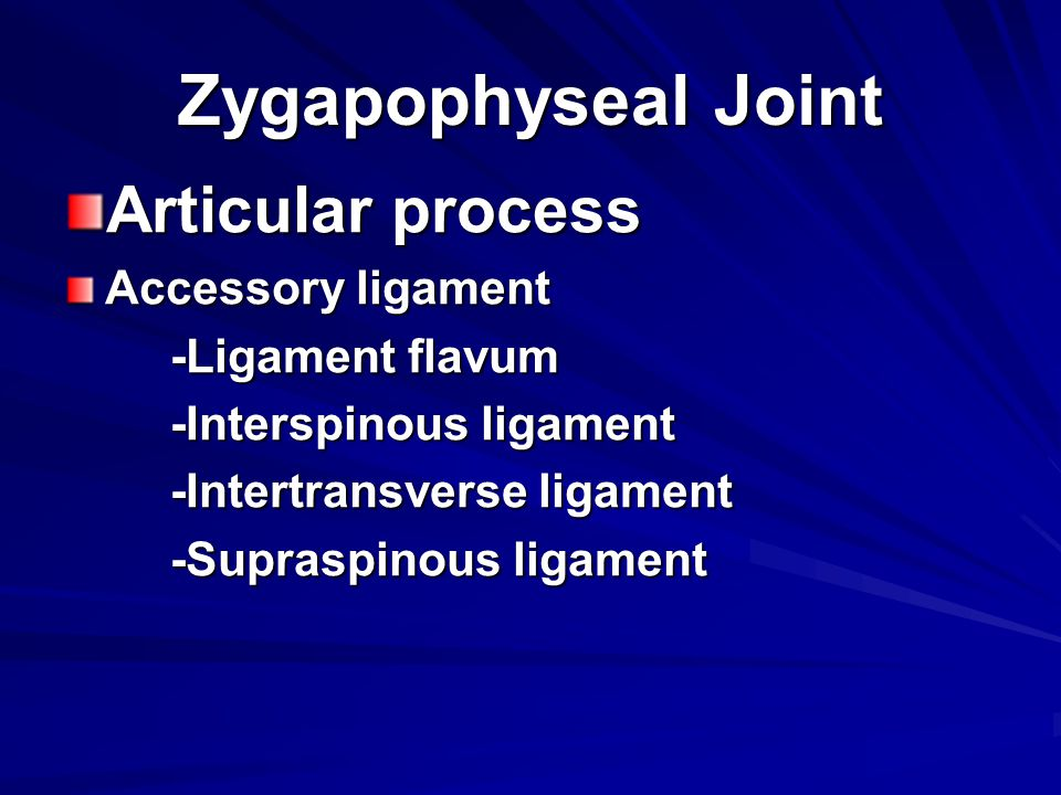 Zygapophyseal Joint Articular process Accessory ligament
