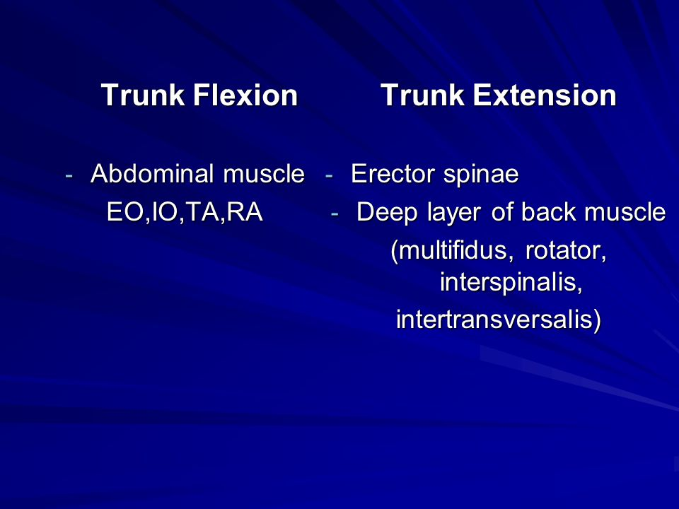 Trunk Extension Trunk Flexion Abdominal muscle EO,IO,TA,RA