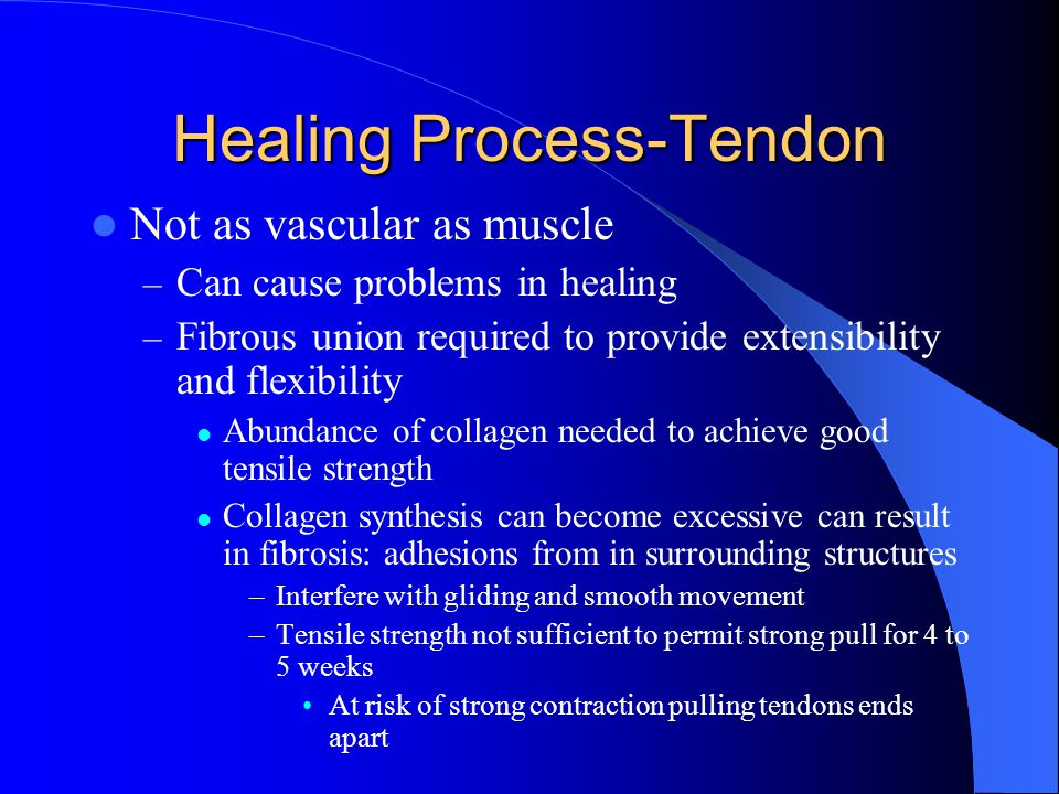 Healing Process-Tendon