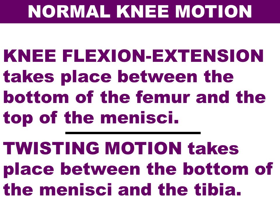 NORMAL KNEE MOTION KNEE FLEXION-EXTENSION takes place between the bottom of the femur and the top of the menisci.