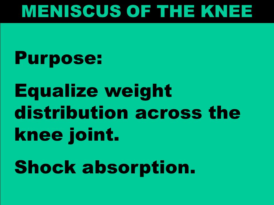 Equalize weight distribution across the knee joint.