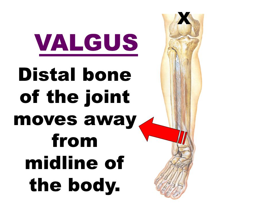 Distal bone of the joint moves away from midline of the body.