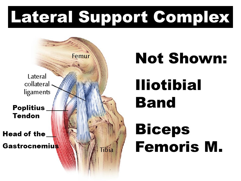 Lateral Support Complex
