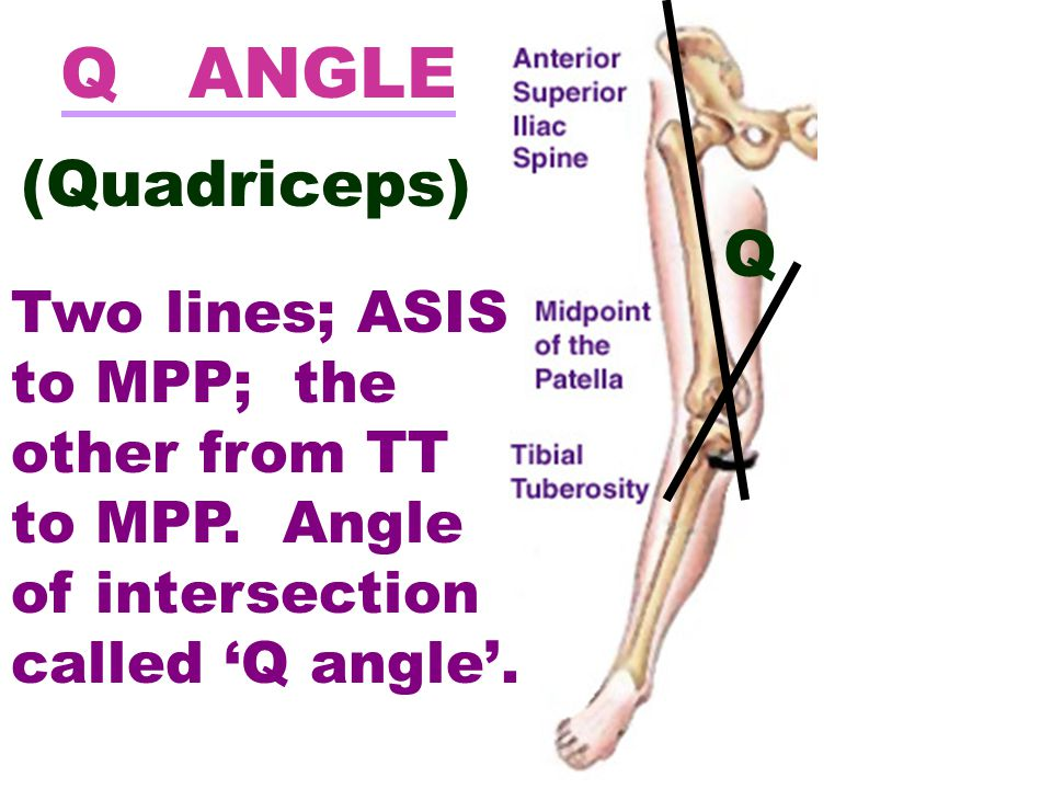 Q ANGLE (Quadriceps) Q. Two lines; ASIS to MPP; the other from TT to MPP.