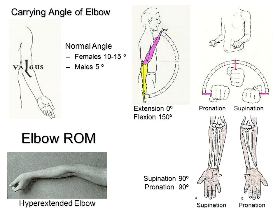 Carrying Angle of Elbow