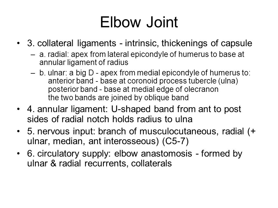 Elbow Joint 3. collateral ligaments - intrinsic, thickenings of capsule.