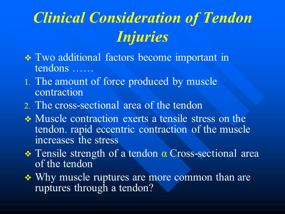 Clinical Consideration of Tendon Injuries