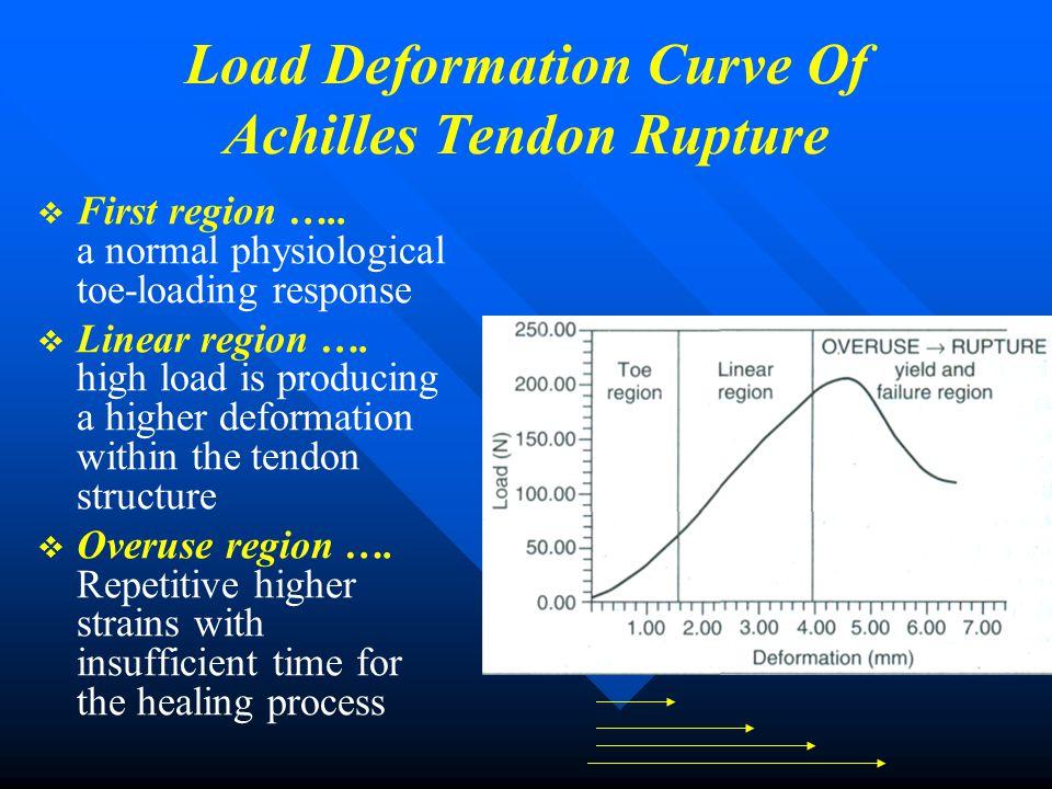 Load Deformation Curve Of Achilles Tendon Rupture