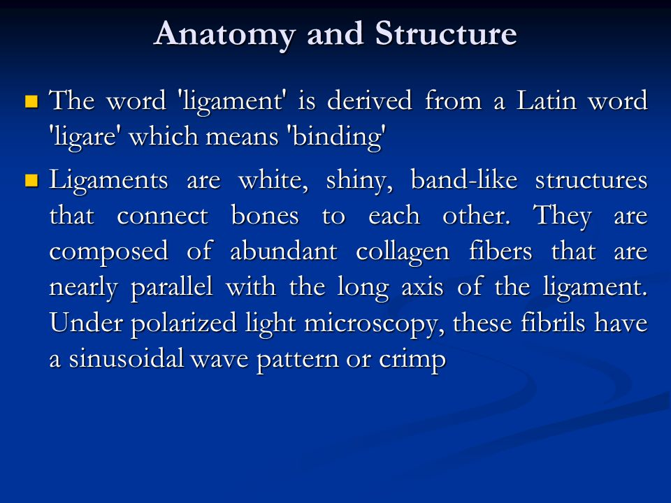 Anatomy and Structure The word ligament is derived from a Latin word ligare which means binding
