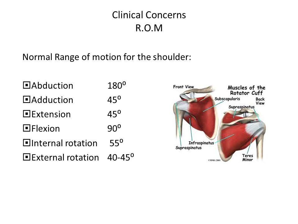 Clinical Concerns R.O.M Normal Range of motion for the shoulder: