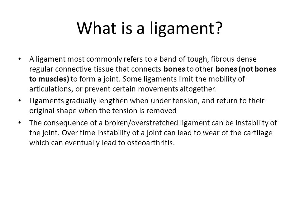 What is a ligament
