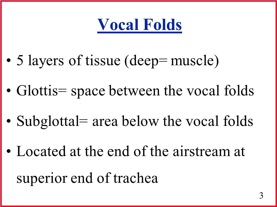 Section 3: Lecture 1; Anatomy & physiology of voice production.