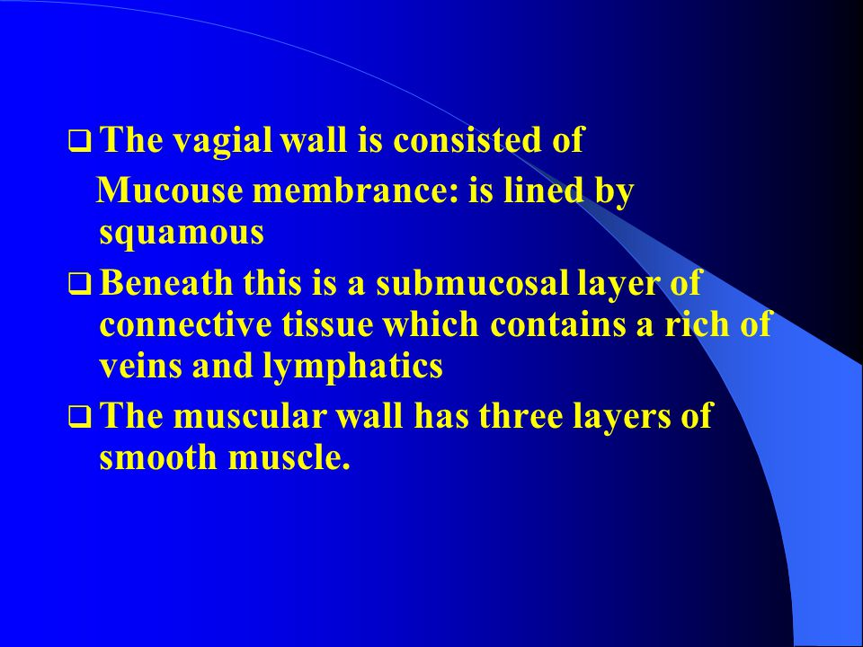The vagial wall is consisted of