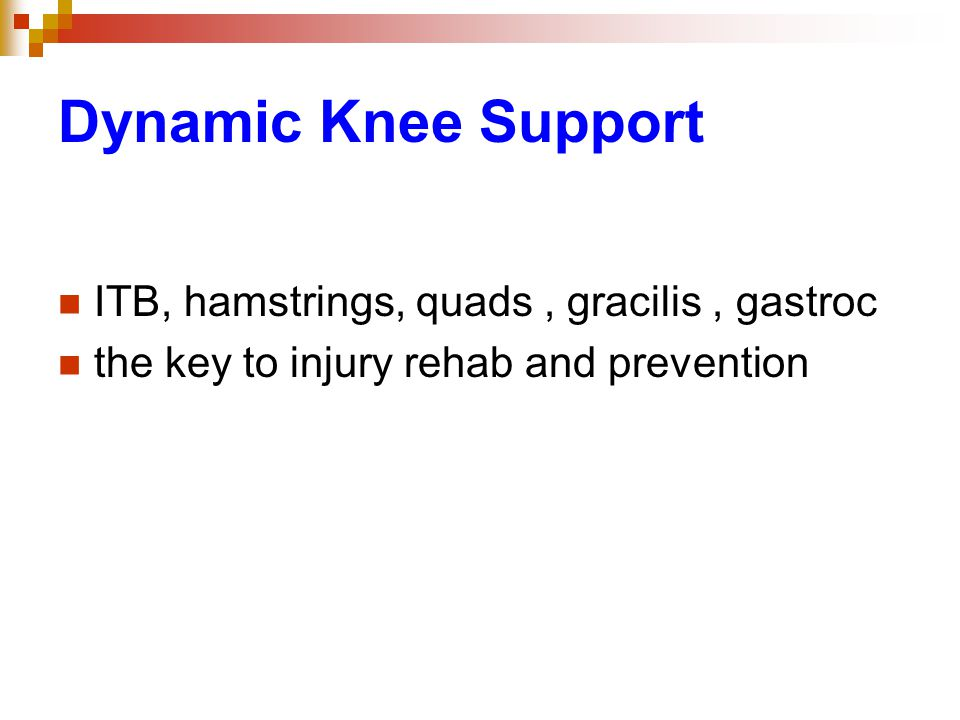 Dynamic Knee Support ITB, hamstrings, quads , gracilis , gastroc
