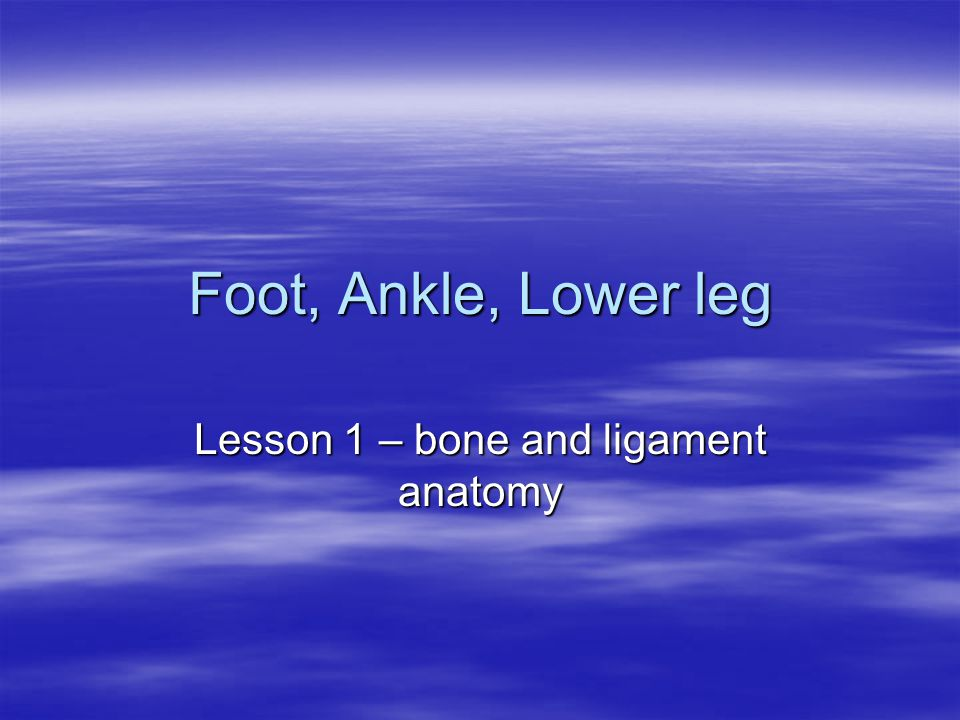 Lesson 1 – bone and ligament anatomy