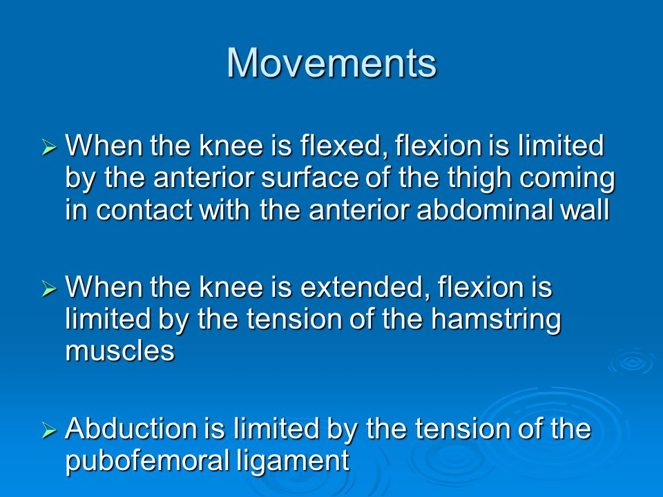 Movements When the knee is flexed, flexion is limited by the anterior surface of the thigh coming in contact with the anterior abdominal wall.