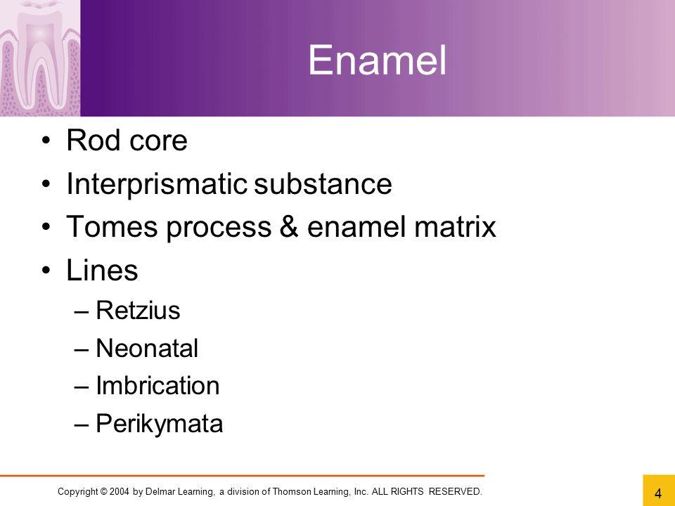Enamel Rod core Interprismatic substance Tomes process & enamel matrix