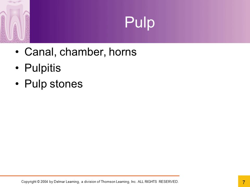Pulp Canal, chamber, horns Pulpitis Pulp stones
