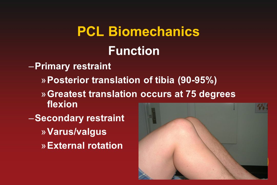 PCL Biomechanics Function Primary restraint