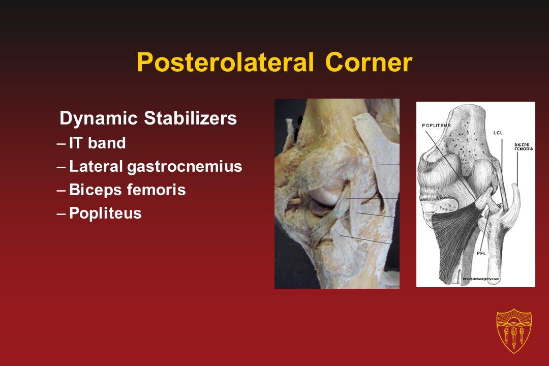Posterolateral Corner