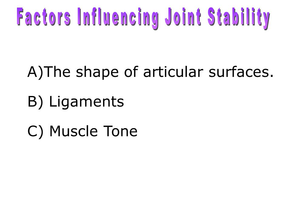 Factors Influencing Joint Stability