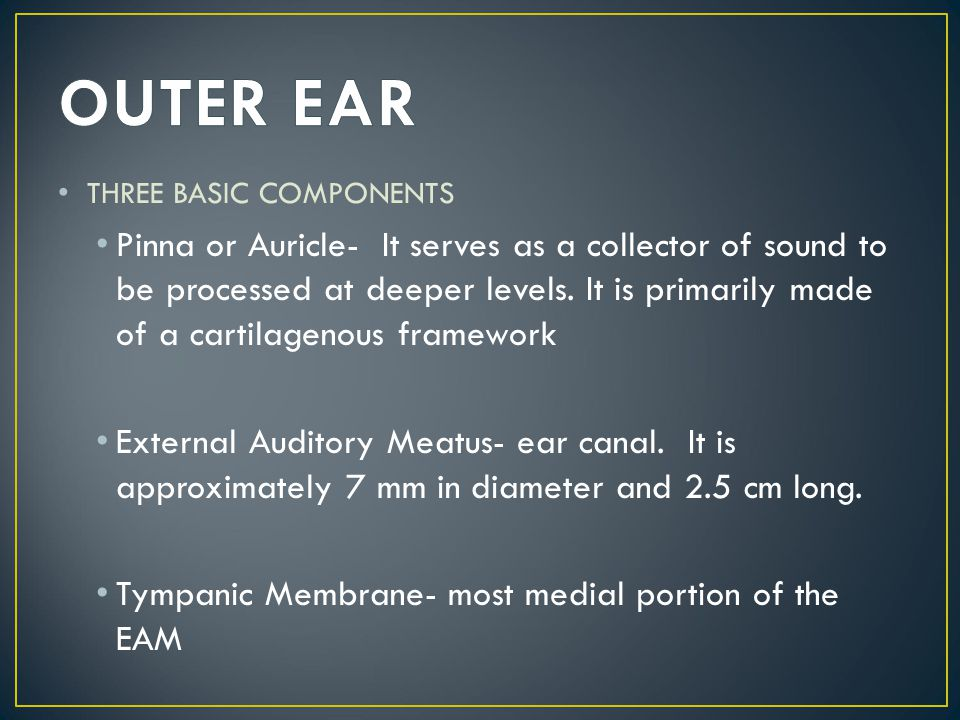 OUTER EAR THREE BASIC COMPONENTS.
