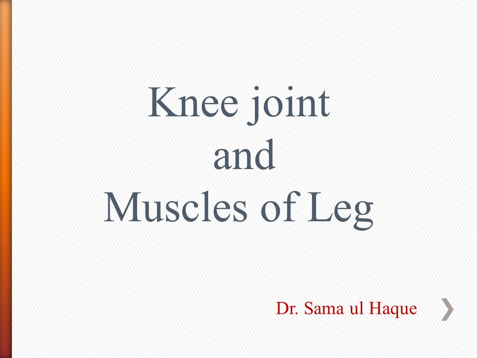 Knee joint and Muscles of Leg Dr. Sama ul Haque