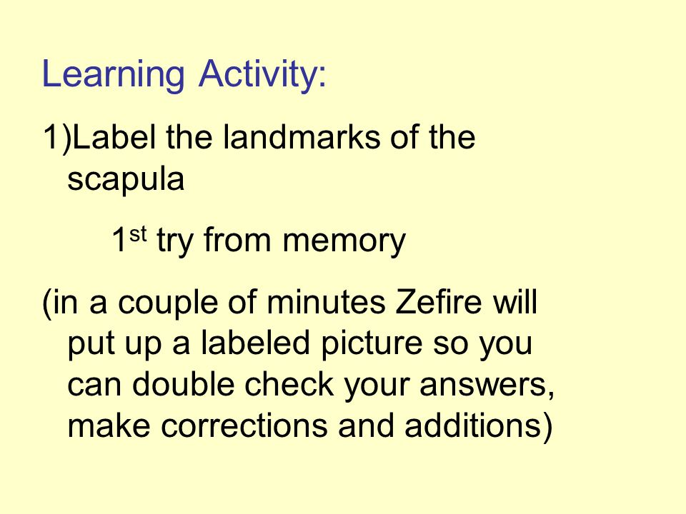Learning Activity: Label the landmarks of the scapula