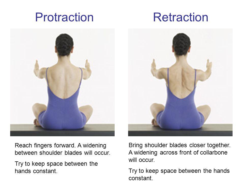 Protraction Retraction