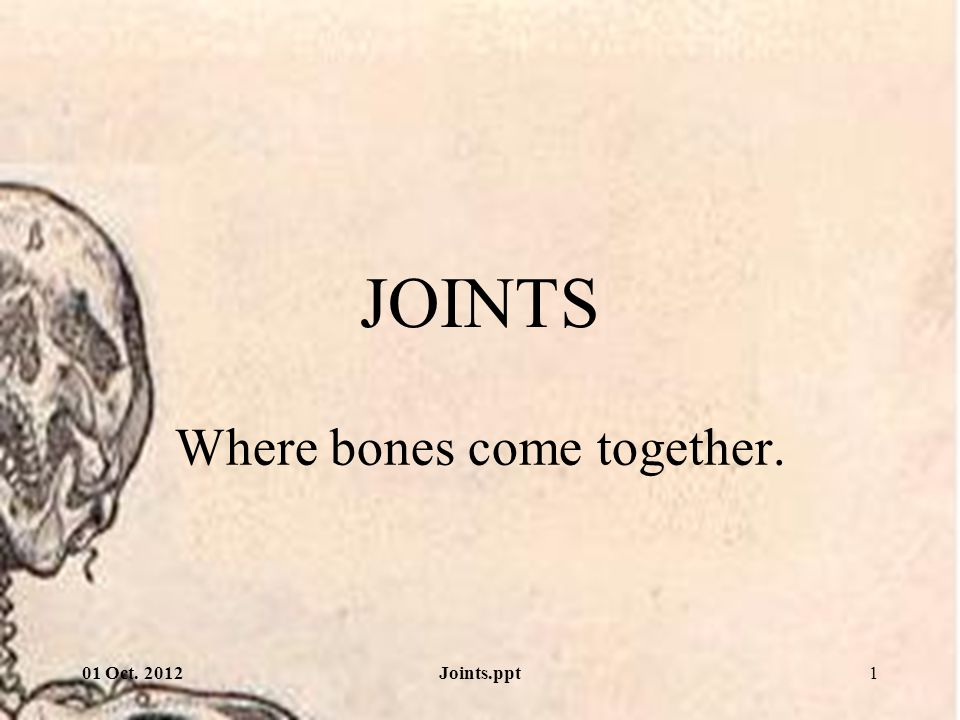 Where bones come together.