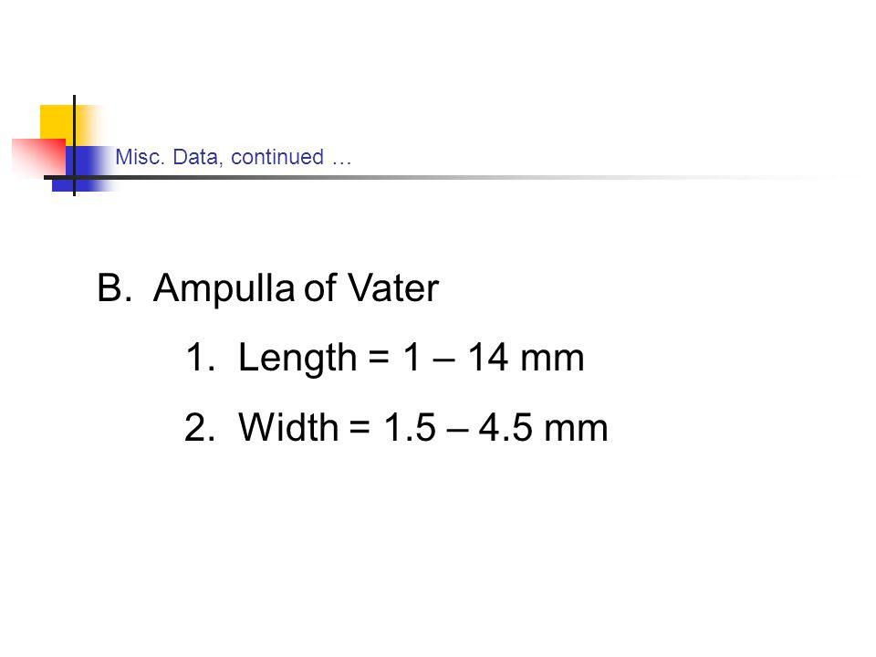 B. Ampulla of Vater 1. Length = 1 – 14 mm 2. Width = 1.5 – 4.5 mm