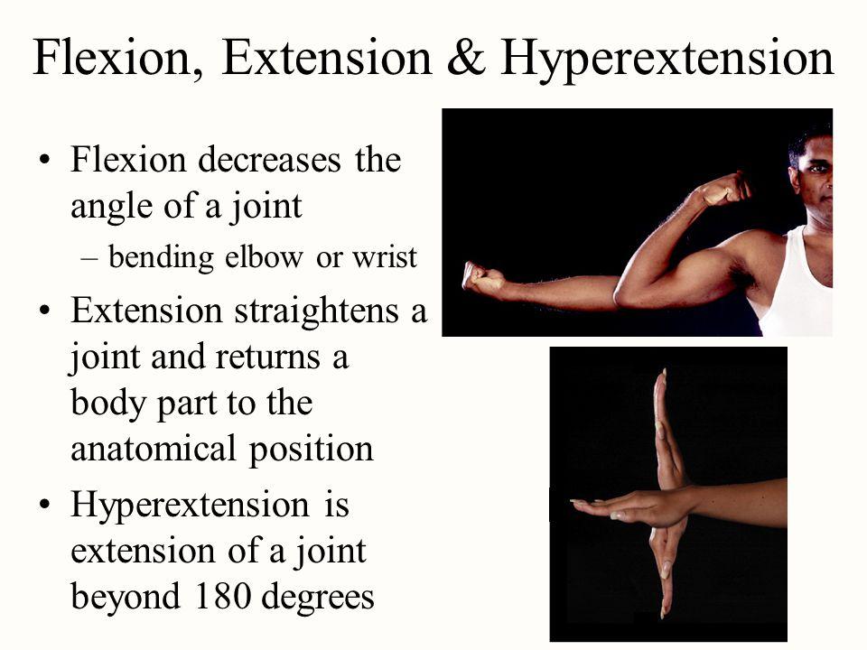Flexion, Extension & Hyperextension