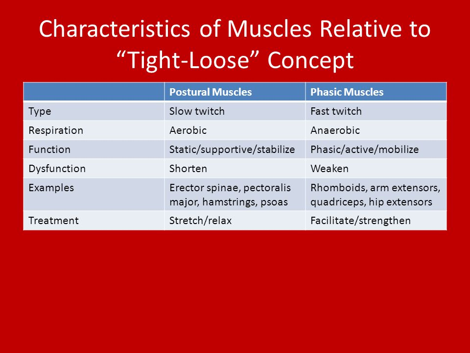 Characteristics of Muscles Relative to Tight-Loose Concept