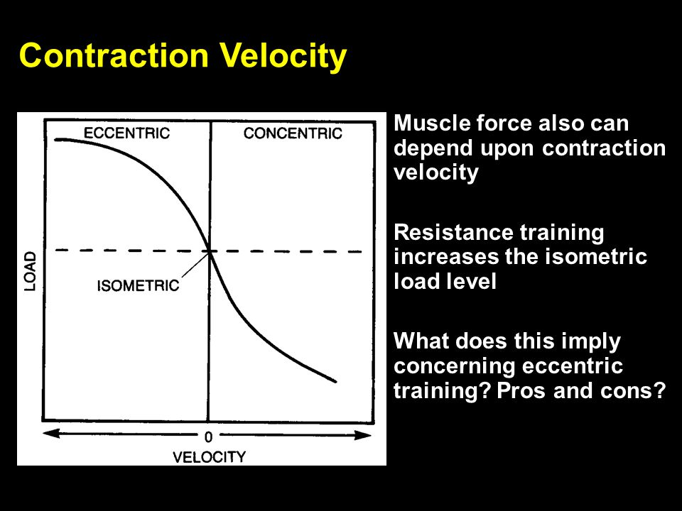 Contraction Velocity Muscle force also can depend upon contraction velocity. Resistance training increases the isometric load level.