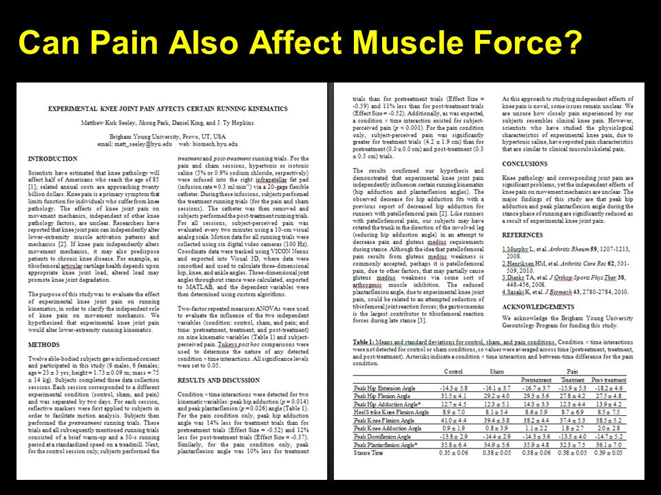 Can Pain Also Affect Muscle Force