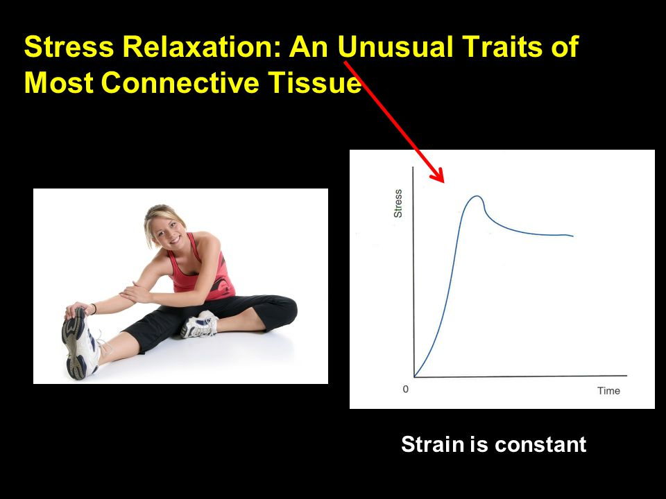 Stress Relaxation: An Unusual Traits of Most Connective Tissue
