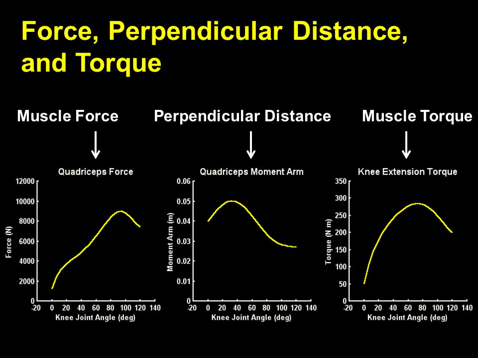 Force, Perpendicular Distance, and Torque