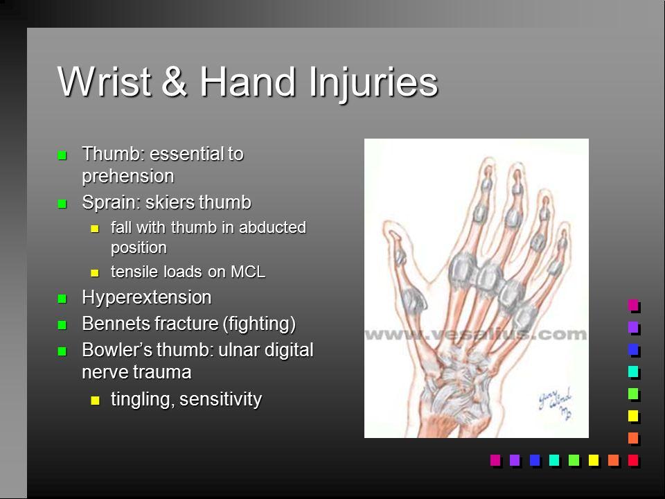 Wrist & Hand Injuries Thumb: essential to prehension
