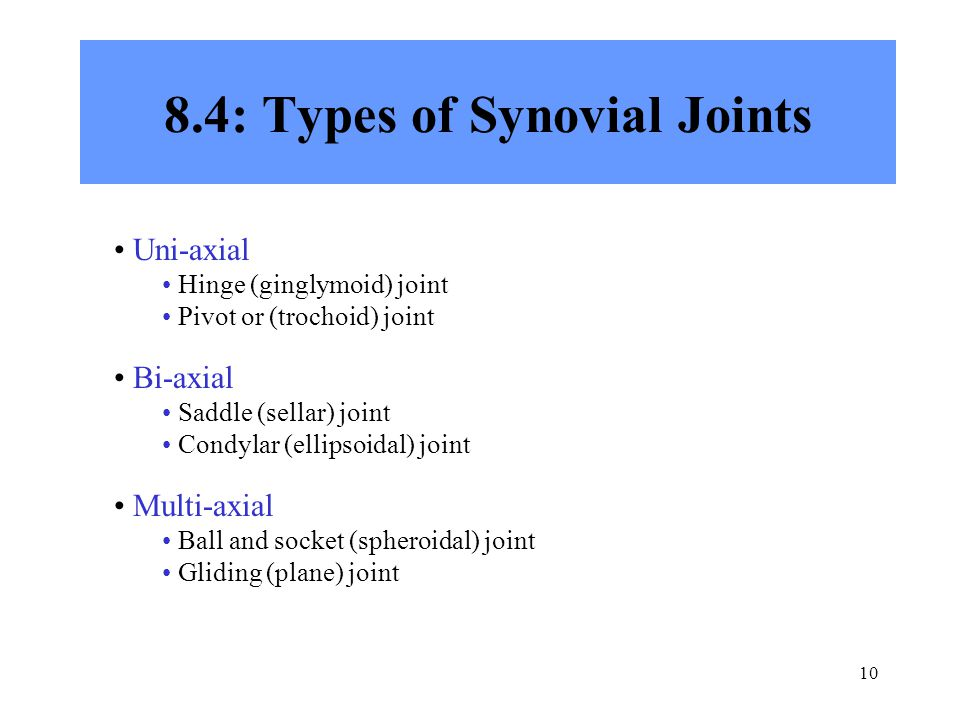 8.4: Types of Synovial Joints