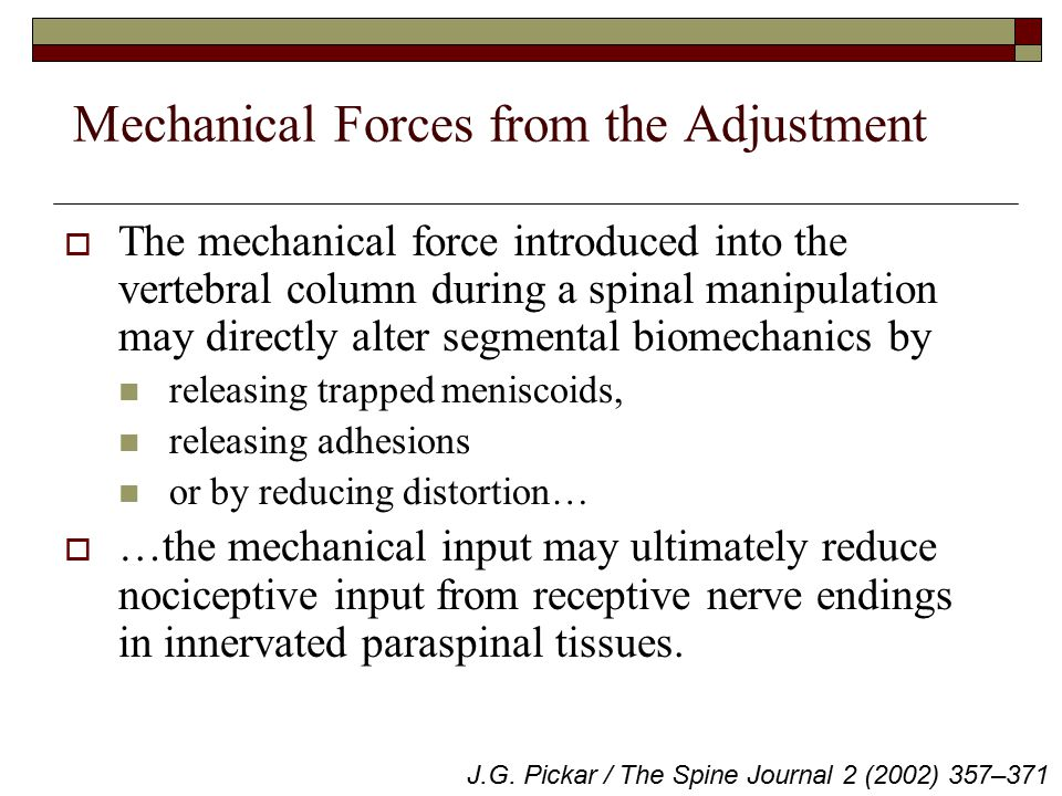 Mechanical Forces from the Adjustment