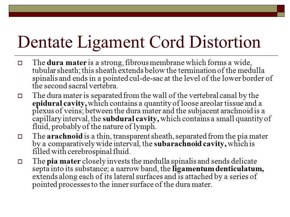 Dentate Ligament Cord Distortion