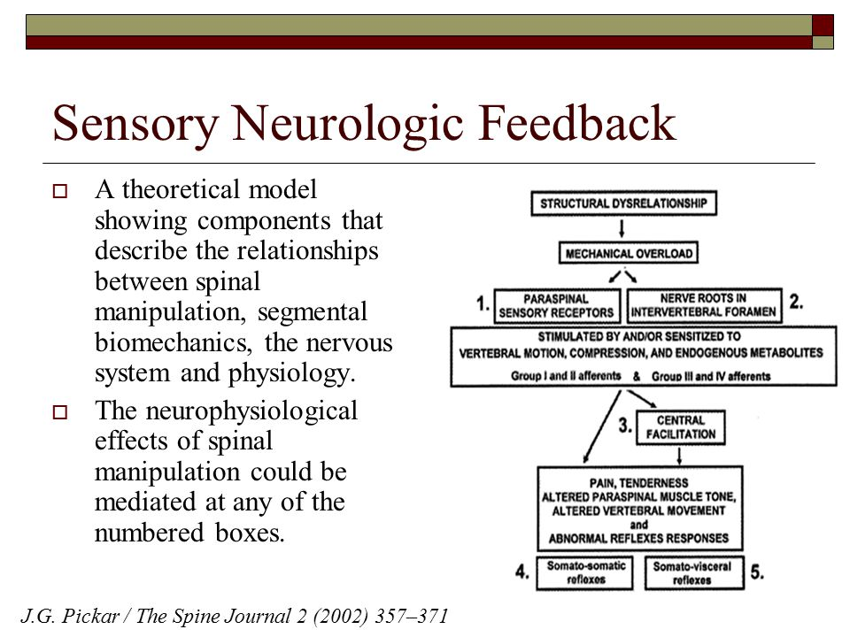 Sensory Neurologic Feedback