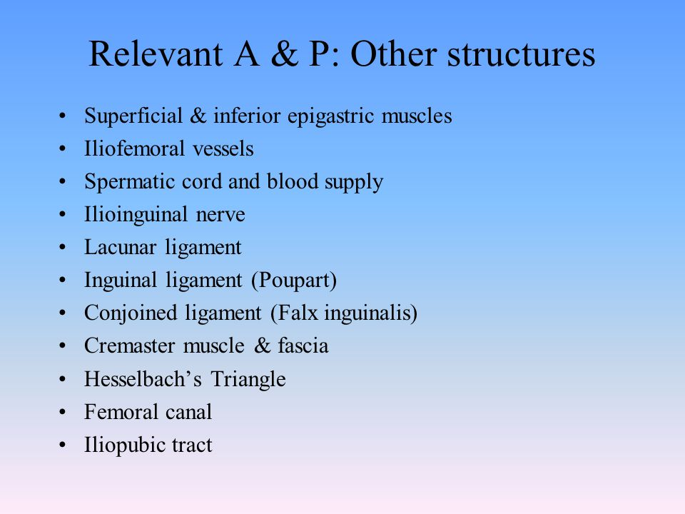 Relevant A & P: Other structures