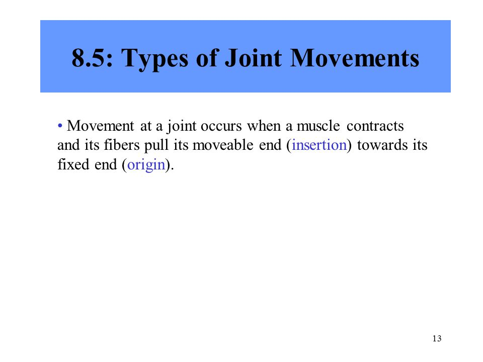 8.5: Types of Joint Movements